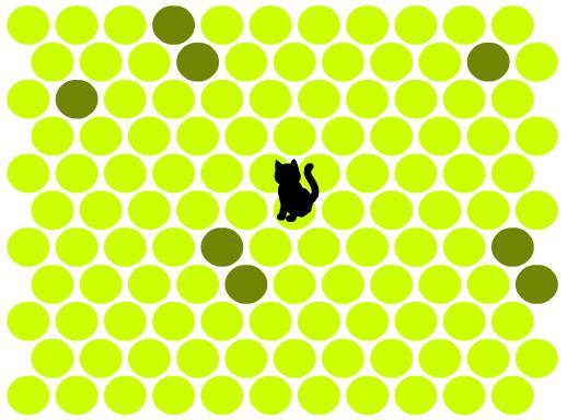 بازی فکری گربه